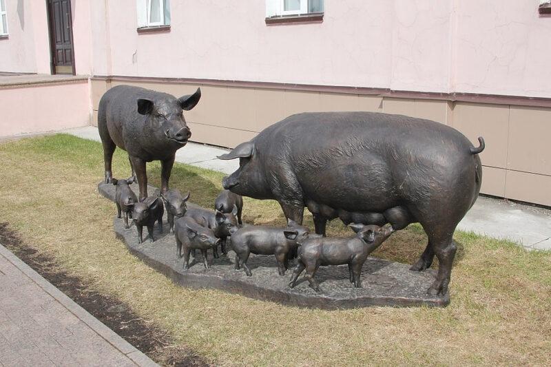 Памятник Свиньям