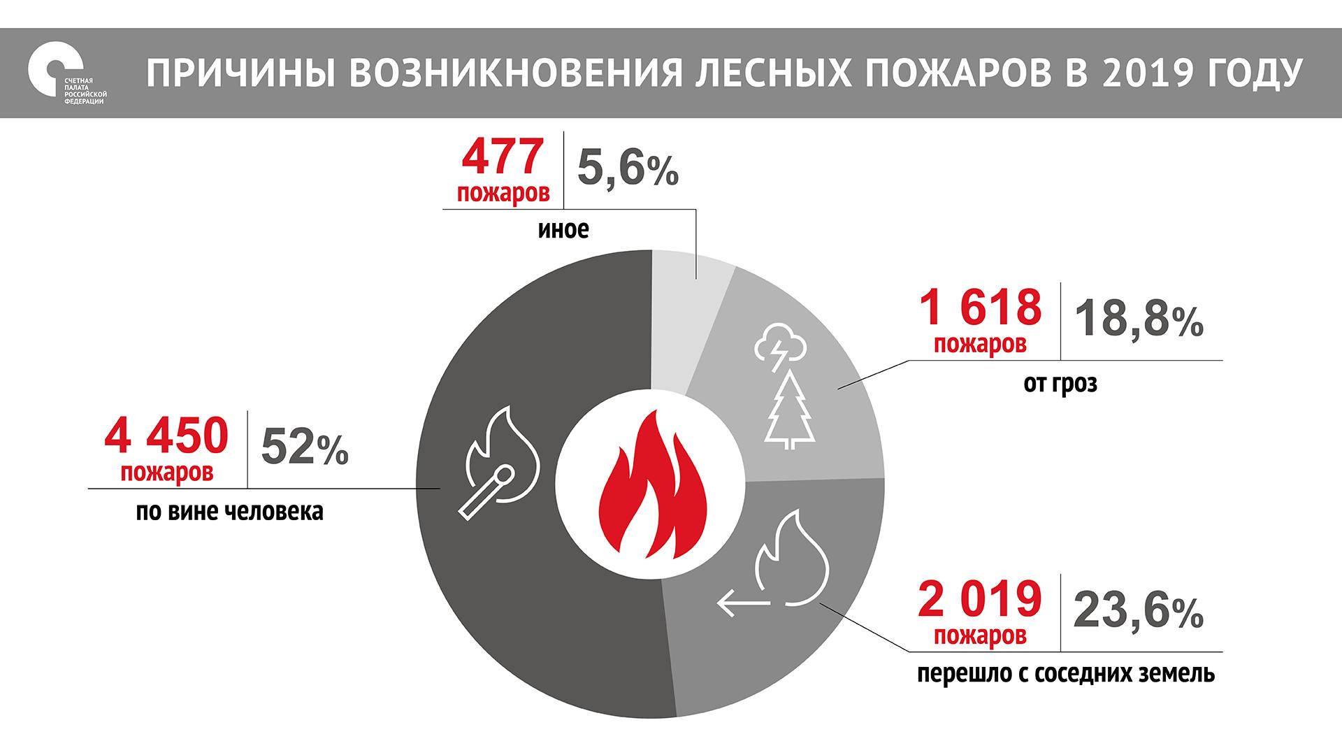 Инфографика счетной палаты Российской Федерации