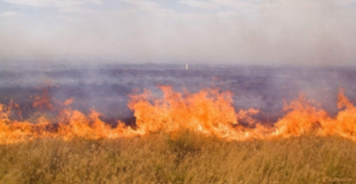 пожар в степи