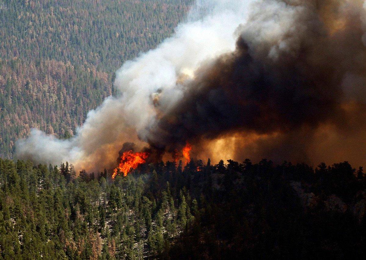 больше всего фото пожаров сибирь болезни важно