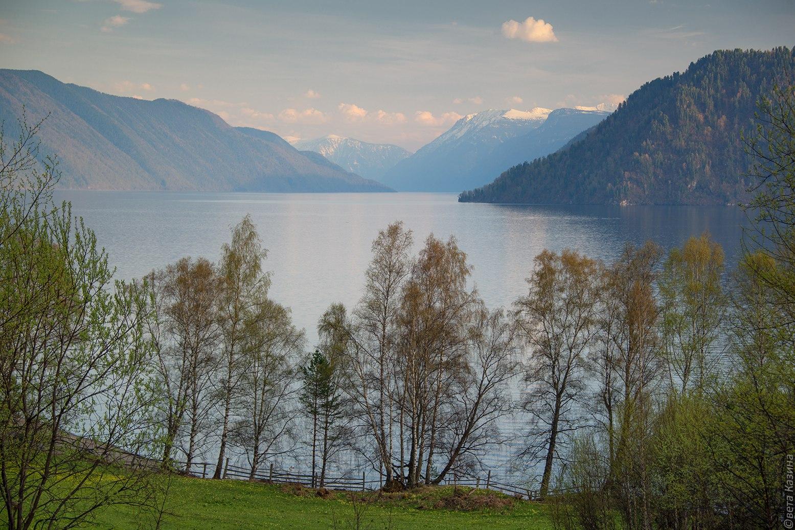 Телецкое озеро. Фото: Светлана Казина