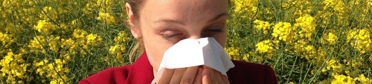 аллергия, чихание, болезнь