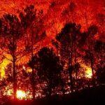 В трех регионах Сибири продолжаются лесные пожары