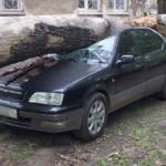 Рухнувшее дерево в Кировском районе раздавило машину