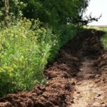 Обнаружен скелет жителя Сарапулки, пропавшего летом прошлого года