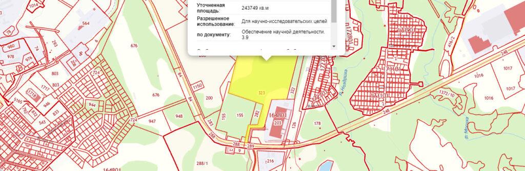 Вот здесь будет расположен СКИФ. Источник: Публичная кадастровая карта НСО