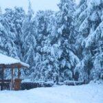 снег на Алтае