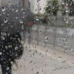 Погода в Новосибирске: всю неделю – прохлада и дожди