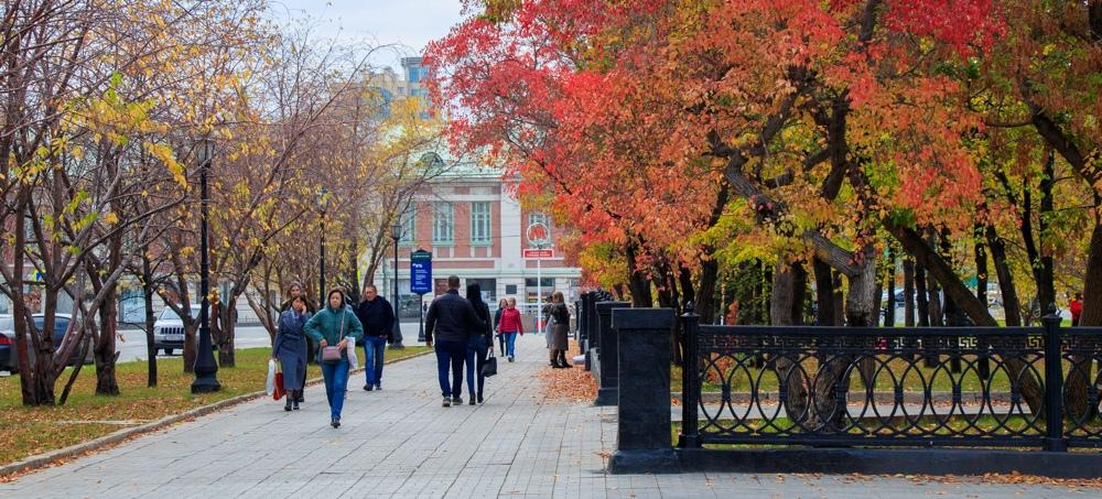Сквер возле Оперного театра в Новосибирске. Фото: Кирилл Буньков