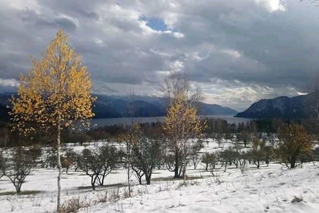 Снег на Телецком озере