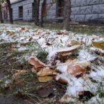 В четверг в Новосибирске похолодает
