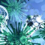 В Искитиме летальность от коронавируса составила 14,6 процента