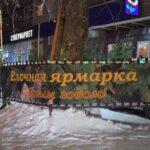 В Новосибирске активно заработали елочные базары (фото)