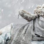 В новогоднюю ночь в Новосибирской области будет холодно