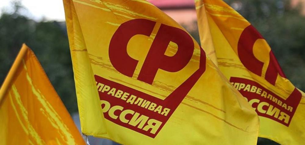 Флаги Справедливой России 2