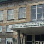 институт цитологии