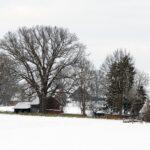 мороз, деревня