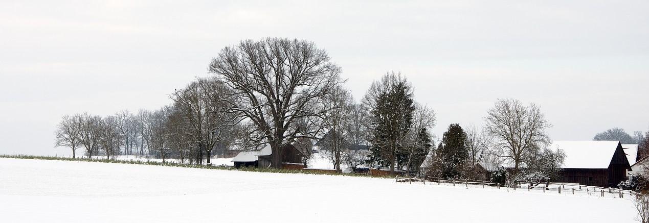 Мороз, деревня, дачи, снег, подростки