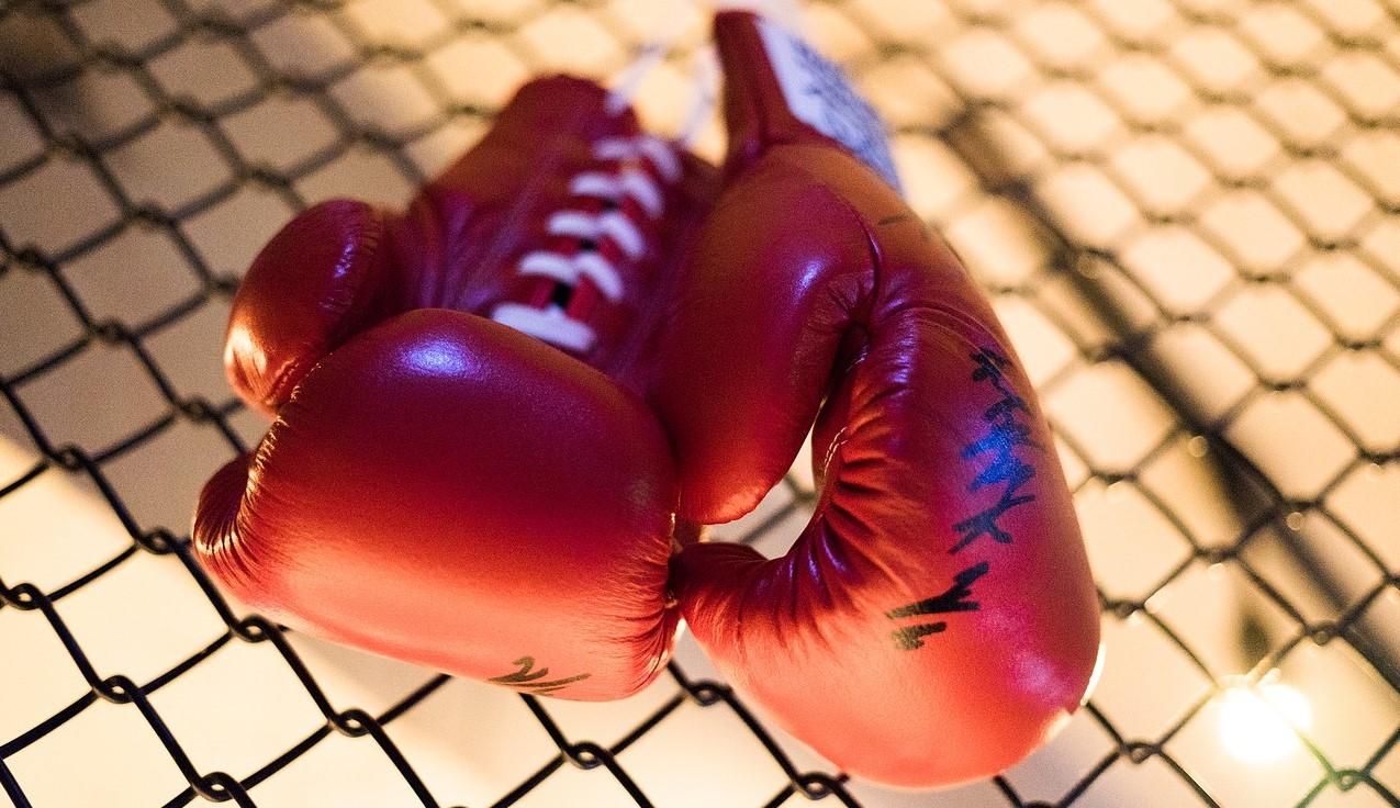 бокс перчатки клетка сотрудник томской ДЮСШ бокса растрата более 1 миллиона рублей