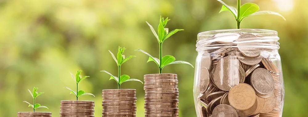 инвестиции в капитал