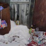 Под Новосибирском неделю не могли вывезти мусор