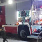 На пожаре в центре Новосибирска погибли две кошки и собака