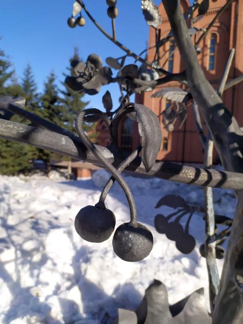 Зимняя вишня 4