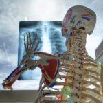 В Томской области раскрыто дело о фальсифицированных рентген аппаратах на 56 миллионов бюджетных рублей