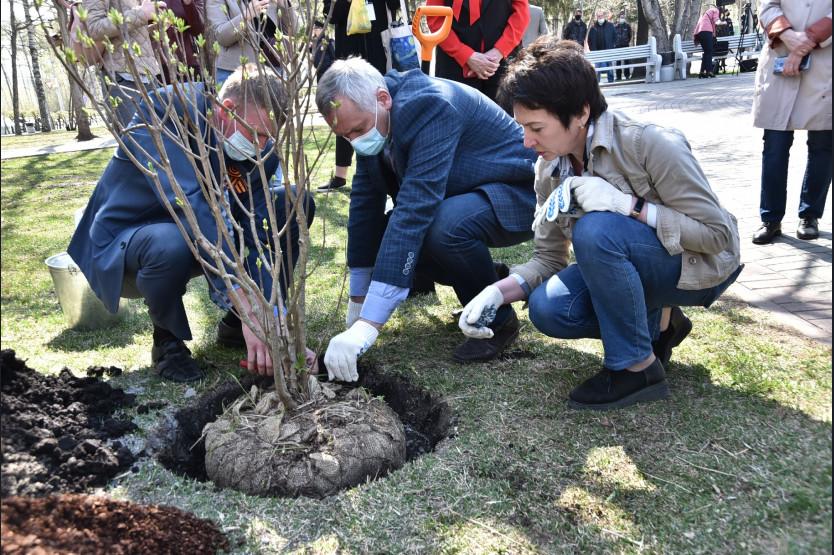 Травников посадил дерево
