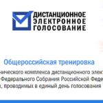 В России проходит тренировка электронного голосования перед выборами в Госдуму
