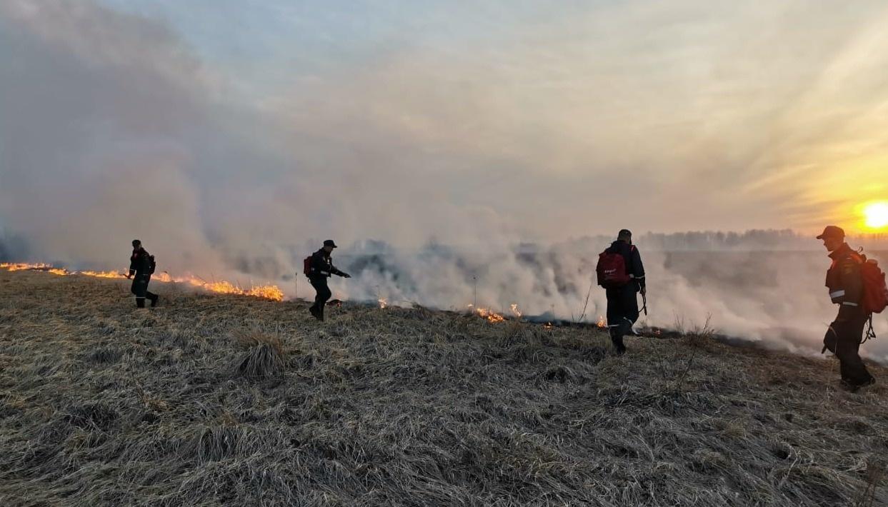 пожар из-за пала травы