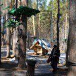 Реконструкция Заельцовского парка