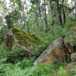 В Кузбассе открывается экологическая тропа «Тайны Арчекаса» 15 июня