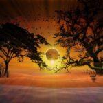 На Вознесение Господне исчезнет часть солнца. Как это отразится на будущем?