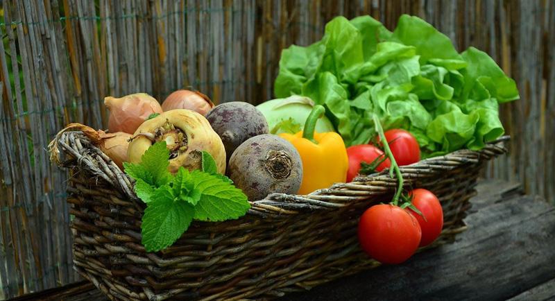 овощи, сад, огород