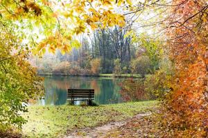 осень октябрь праздники